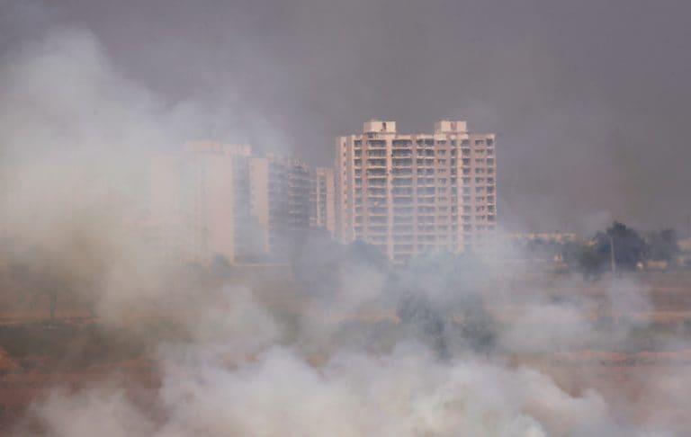 燃烧的真理 - 随着农民焚烧田地,德里笛鸟窒息烟雾